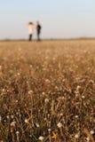 Ασημένιο λουλούδι κουμπιών Στοκ φωτογραφία με δικαίωμα ελεύθερης χρήσης