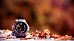 Ασημένιο wristwatch στο τοπίο φθινοπώρου στοκ εικόνες