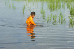 Ασιάτης, ποτίζει, μικρό παιδί, κίνδυνος Στοκ Φωτογραφία