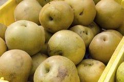 ασιατικά αχλάδια στοκ φωτογραφία με δικαίωμα ελεύθερης χρήσης