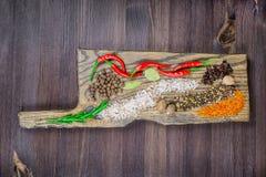 Ασιατικά καρυκεύματα στον τέμνοντα πίνακα, φωτεινός και αλμυρός στοκ φωτογραφία με δικαίωμα ελεύθερης χρήσης