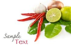 Ασιατικά καυτά και πικάντικα τρόφιμα συστατικών Στοκ Εικόνες