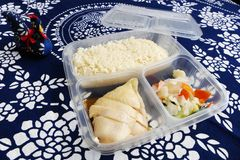 Ασιατικά πάρτε έξω, ρύζι κοτόπουλου Στοκ εικόνα με δικαίωμα ελεύθερης χρήσης