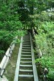 ασιατικά σκαλοπάτια Στοκ Φωτογραφίες