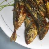 Ασιατικά τηγανισμένα ψάρια στοκ φωτογραφία με δικαίωμα ελεύθερης χρήσης