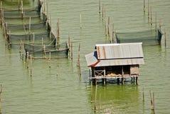 Ασιατική αλιεία στην ταϊλανδική λίμνη Στοκ εικόνα με δικαίωμα ελεύθερης χρήσης