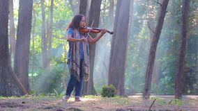 Ασιατική γυναίκα με το βιολί στο δάσος πεύκων στο πρωί φωτός του ήλιου απόθεμα βίντεο