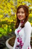 Ασιατική γυναίκα ομορφιάς στον παραδοσιακό ιματισμό του Βιετνάμ Πολιτισμός της Ασίας Στοκ εικόνα με δικαίωμα ελεύθερης χρήσης