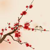 Ασιατική ζωγραφική ύφους, άνθος δαμάσκηνων την άνοιξη διανυσματική απεικόνιση