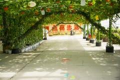 Ασιατική Κίνα, Πεκίνο καρναβάλι, γεωργία, καλλιέργεια θερμοκηπίων Στοκ εικόνες με δικαίωμα ελεύθερης χρήσης