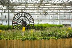 Ασιατική Κίνα, Πεκίνο καρναβάλι, γεωργία, καλλιέργεια θερμοκηπίων Στοκ Εικόνες