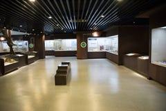 Ασιατική Κίνα, Πεκίνο, μουσείο της αρχαίας αίθουσας έκθεσης ŒIndoor animalï ¼, Στοκ Εικόνες