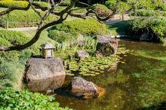 Ασιατική λίμνη κήπων με τους κρίνους νερού και βράχοι με τις αντανακλάσεις που πλαισιώνονται από ένα κλαδί δέντρων - εκλεκτική εσ στοκ εικόνες