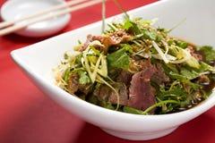 Ασιατική σαλάτα ύφους με τις λουρίδες κρέατος στοκ φωτογραφίες