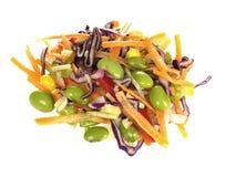 ασιατική σαλάτα Στοκ Εικόνες