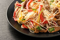 Ασιατική σαλάτα με τα νουντλς, το βόειο κρέας και τα λαχανικά ρυζιού Στοκ εικόνα με δικαίωμα ελεύθερης χρήσης