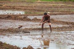 Ασιατική σκληρή δουλειά αγροτών Στοκ εικόνα με δικαίωμα ελεύθερης χρήσης