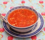 ασιατική σούπα Στοκ εικόνες με δικαίωμα ελεύθερης χρήσης