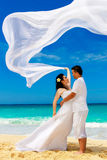 Ασιατικοί νύφη και νεόνυμφος σε μια τροπική παραλία Γάμος και μήνας του μέλιτος Στοκ Εικόνες