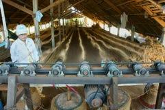 Ασιατικός εργαζόμενος, χαλί κοΐρ, βιετναμέζικα, ίνα καρύδων Στοκ φωτογραφία με δικαίωμα ελεύθερης χρήσης