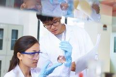 Ασιατικός εργαστηριακός δύο επιστήμονας που εργάζεται στο εργαστήριο με τους σωλήνες δοκιμής στοκ φωτογραφία με δικαίωμα ελεύθερης χρήσης