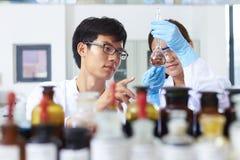 Ασιατικός εργαστηριακός δύο επιστήμονας που εργάζεται στο εργαστήριο με τους σωλήνες δοκιμής στοκ εικόνες