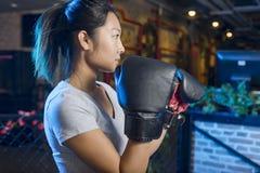 Ασιατικός θηλυκός εγκιβωτισμός άσκησης μπόξερ Στοκ φωτογραφία με δικαίωμα ελεύθερης χρήσης