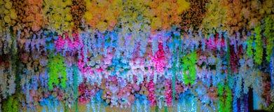 ασιατικός καρπός rambutan Στοκ Εικόνες