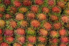 ασιατικός καρπός rambutan στοκ εικόνα με δικαίωμα ελεύθερης χρήσης