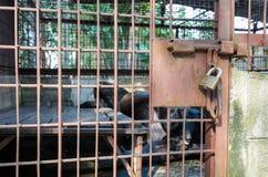 Ασιατικός Μαύρος κράτησης σιδήρου χρησιμοποιημένος ο κλουβί αντέχει Στοκ Φωτογραφία