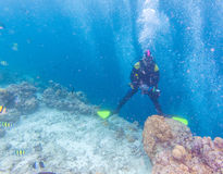Ασιατικό άτομο με την υποβρύχια εγκιβωτισμένη κάμερα στοκ φωτογραφία με δικαίωμα ελεύθερης χρήσης