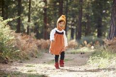 Ασιατικό κορίτσι μικρών παιδιών που περπατά μόνο κατά μια δασική, μπροστινή άποψη στοκ εικόνες
