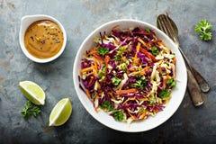 Ασιατικό λάχανο slaw με τη σάλτσα φυστικοβουτύρου στοκ εικόνες
