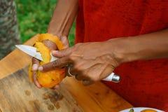 Ασιατικό μάγκο φλούδας κοριτσιών, Ινδονησία, Μπαλί Στοκ Φωτογραφίες