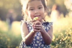 Ασιατικό λουλούδι εκμετάλλευσης μικρών κοριτσιών παιδιών στο χέρι της Στοκ φωτογραφία με δικαίωμα ελεύθερης χρήσης