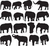 Ασιατικό περίγραμμα σκιαγραφιών ελεφάντων Απεικόνιση αποθεμάτων