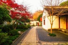 Ασιατικό τοπίο πρωινού κήπων Στοκ Εικόνες