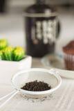 Ασιατικό τσάι με muffins σοκολάτας Στοκ Εικόνα