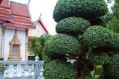 ασιατικό ύφος ανασκόπηση&sigm Chalong, Ταϊλάνδη Στοκ Εικόνα