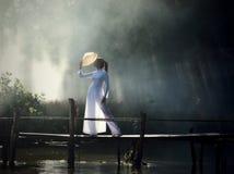 ασιατικό ύφος βιετναμέζι&kapp Στοκ Εικόνες