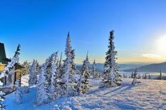 δασικός παγωμένος χειμώνας οχημάτων για το χιόνι βουνών πρωινού ξέφωτων Στοκ φωτογραφία με δικαίωμα ελεύθερης χρήσης