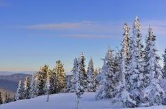 δασικός παγωμένος χειμώνας οχημάτων για το χιόνι βουνών πρωινού ξέφωτων Στοκ Εικόνες