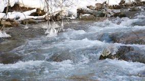 δασικός ποταμός χιονώδης απόθεμα βίντεο