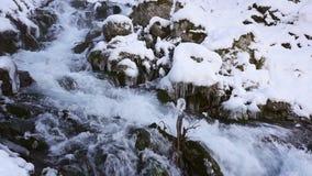 δασικός ποταμός χιονώδης φιλμ μικρού μήκους