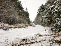 δασικός δρόμος χιονώδης στοκ φωτογραφίες με δικαίωμα ελεύθερης χρήσης