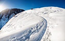δασικός χιονώδης χειμώνας ουρανού τοπίου βουνών συννεφιάζω Στοκ Εικόνες