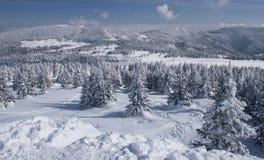 δασικός χιονώδης χειμώνας ουρανού τοπίου βουνών συννεφιάζω Στοκ εικόνες με δικαίωμα ελεύθερης χρήσης