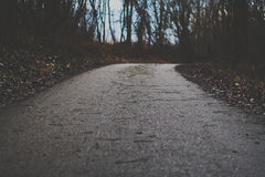 δασικός koh mak δρόμος Στοκ Εικόνες