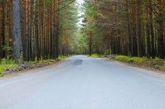 δασικός koh mak δρόμος Στοκ Φωτογραφίες
