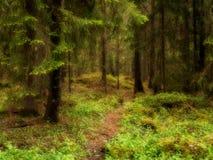 δασικό δρύινο φως του ήλιου σχεδίου συνόρων ανασκόπησης φθινοπώρου βελανιδιών Στοκ Φωτογραφίες